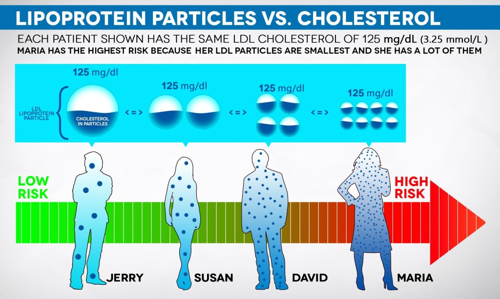 Particle Size Cholesterol test